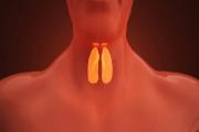 天津养老院谈谈甲状腺结节